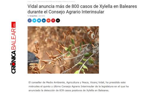 cronica-balear-portada-blog