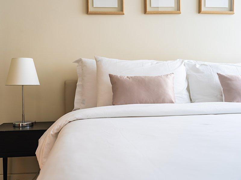 La importancia del control de plagas en hoteles | Trima Baleares